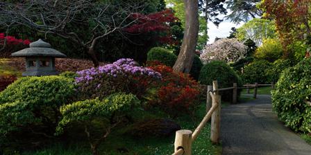 Japanese Tea Garden San Francisco CA