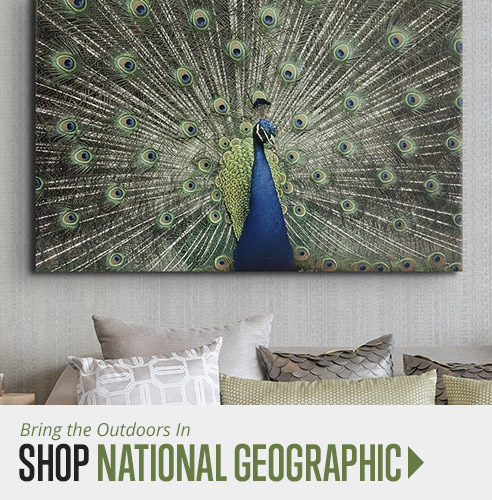 shop national geographic wall art