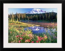 Mt Rainier and wildflowers at Reflection lake Mt Rainier National Park Washington