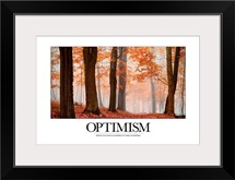 Inspirational Motivational Poster: Optimism