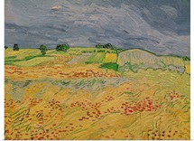 Plain at Auvers, 1890 (oil on canvas)
