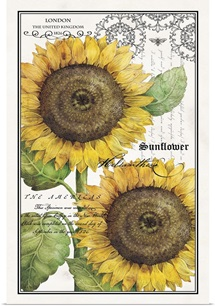 Botanical Sunflower