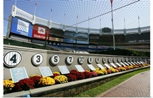 Monument Park at Yankee Stadium in 2008