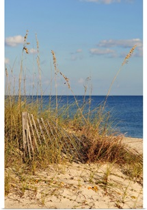 Sand Fence and Dune Grass