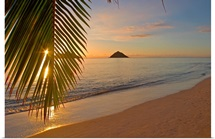 Hawaii, Oahu, Mokulua Islands, Golden Sunrise At Lanikai Beach