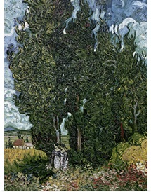 The cypresses, c.1889 90 (oil on canvas)