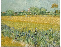 Field With Irises Near Arles By Vincent Van Gogh