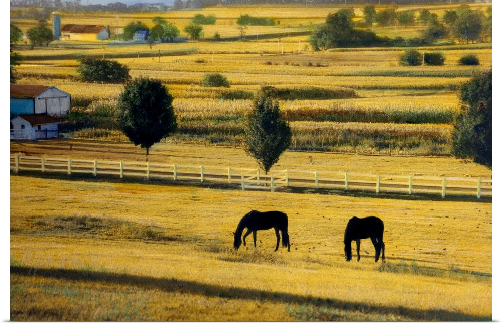 Beautiful Amish Wall Decor Ensign - Art & Wall Decor - hecatalog.info