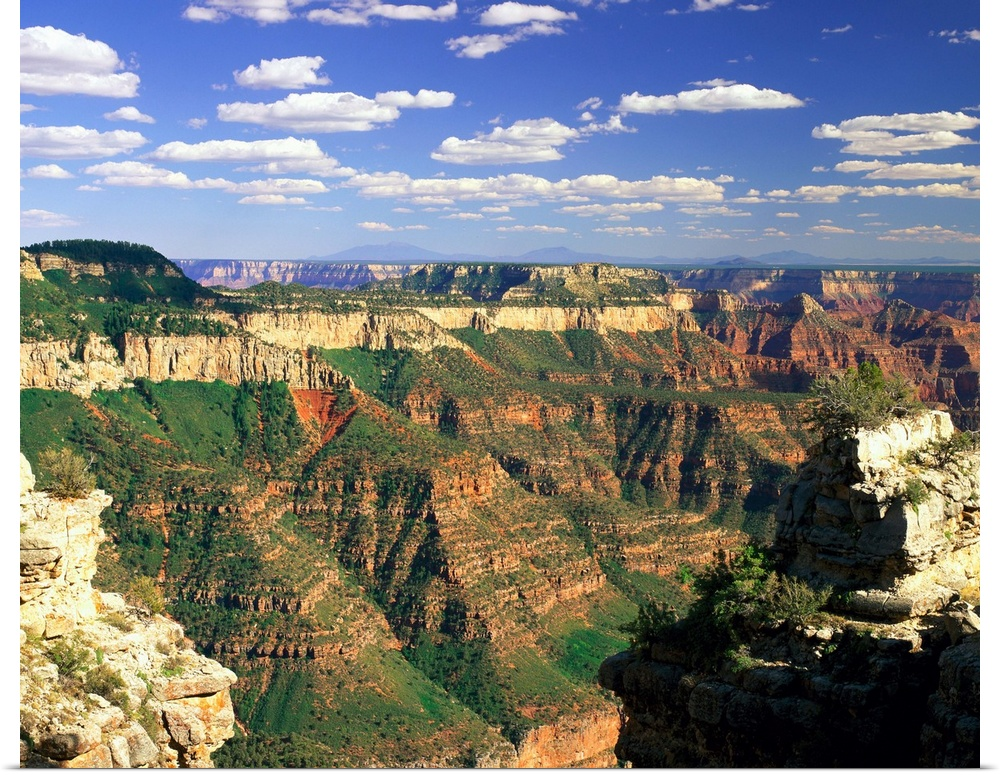 an introduction to the grand canyon national park in the united states The most of your grand canyon national park trip by visiting one of the park's   a 3-d map to give you sense of perspective, cultural exhibits, an introductory.