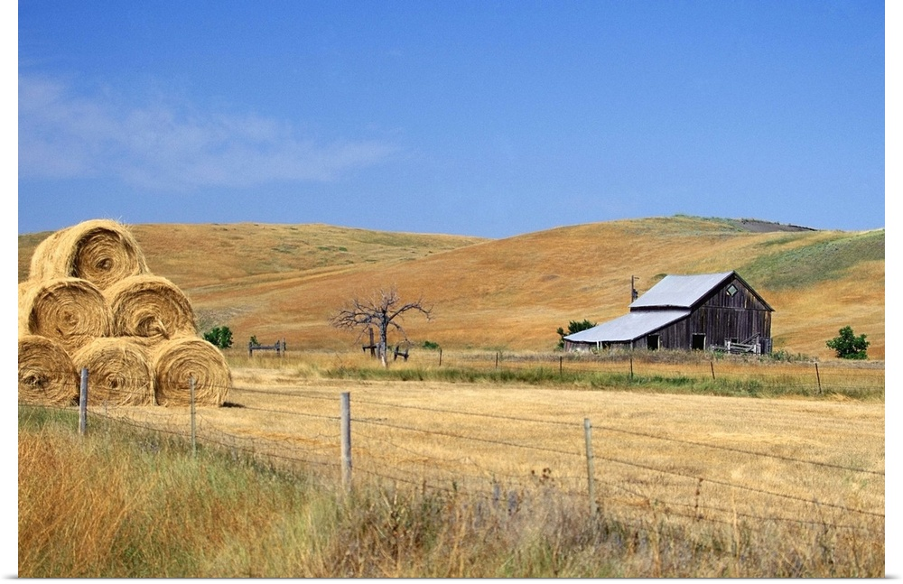 Poster Print Wall Art Entitled Usa South Dakota Bales Of Hay In A Farm