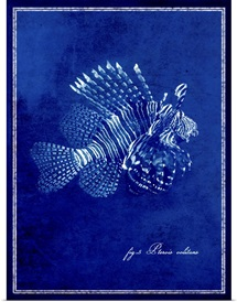 Marine Collection IV - Lionfish