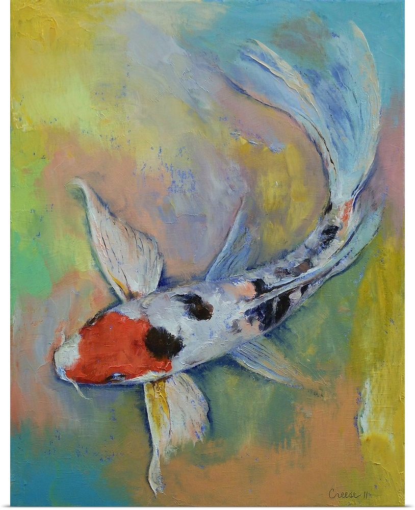 Poster print wall art entitled maruten butterfly koi ebay for Large butterfly koi for sale