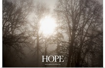Inspirational Motivational Poster: Hope Shines brightest at the darkest hour