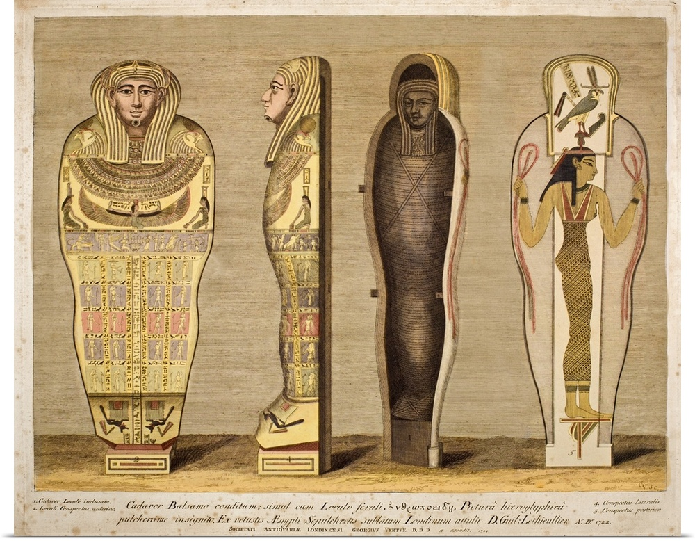 Details about Poster Print Wall Art entitled First British Museum Mummy and coffin