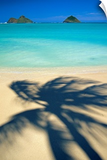 Hawaii, Oahu, Lanikai Beach, Shadow Of Palm Tree Near Mokulua Islands