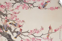 Singing Birds in Spring