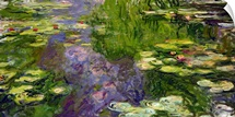 Waterlilies (oil on canvas)