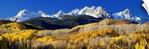 Colorado, Rocky Mountains, aspens, autumn