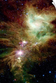 Newborn stars in the Christmas Tree cluster