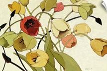 Tulip Toss