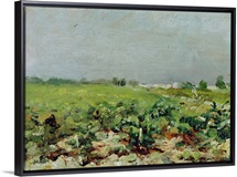 Celeyran, View of the Vineyard, 1880 (oil on canvas)