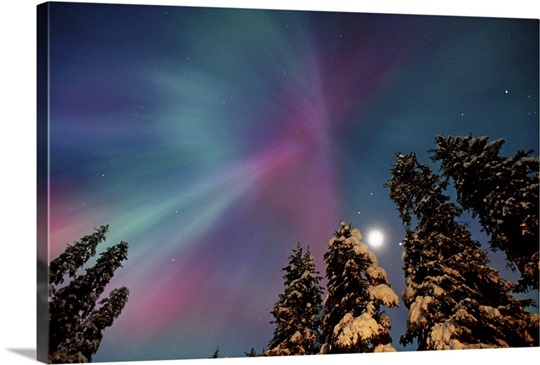 Aurora Corona and Moon Over Crow Creek, Southcentral, Alaska
