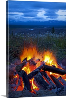 Close up view of a camp fire with a view of the Chugach Mountain in the distance