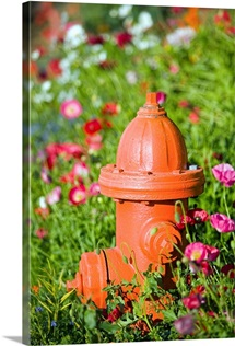 Fire hydrant and flowers Kodiak Island Southwest Alaska