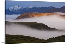 Fog settles between mountain ridges at sunrise in Sable Pass, Denali National Park