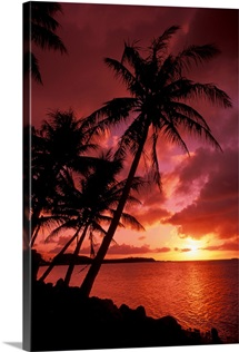 Guam, Tumon Bay, Bright Red Sunset And Silhouetted Palms On Beach