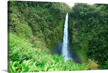 Hawaii, Big Island, Akaka Falls State Park, View Of Misty Falls