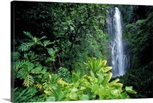 Hawaii, Maui, Hana, Wailea Falls, Surrounded By Lush Greenery