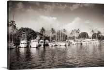 Hawaii, Maui, Lahaina, Boats Lined In Harbor