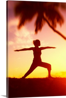 Hawaii, Maui, Olowalu, Woman Doing Yoga At Sunset Under Palm Tree