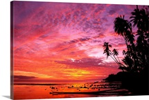 Hawaii, Molokai, Dramatic Tropical Sunset, Palms At Kapuaiwa Coconut Grove