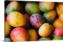 Hawaii, Oahu, Honolulu, Fresh, Ripe Mangoes For Sale At Chinatown Market Stall