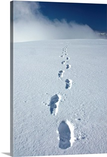 Hikers boot tracks in snow leading up to Primrose Ridge, Winter in Denali National Park