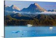 Icebergs floating in Aleks' Lake, Alaska