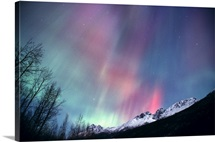 Multi colored Northern Lights (Aurora borealis) fill the night sky