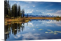 North face and peak of Mt. Mckinley reflected in tundra pond in Denali National Park