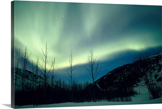 Northern Lights Winter Alaska