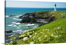 Oregon, Central Coast, Yaquina Head Historic Lighthouse And Natural Wilderness Area