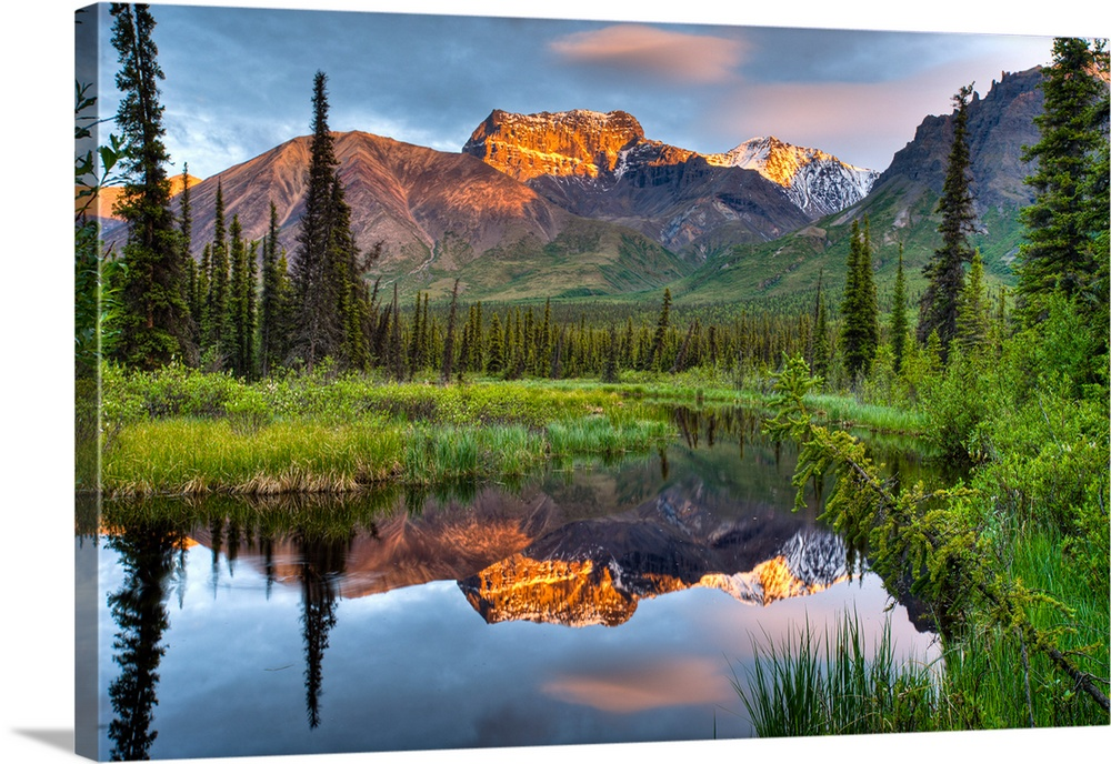 Reflection of Skookum Volcano in a pond at sunset in Wrangell St. Ellias National Park, Southcentral Alaska