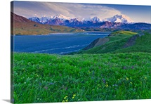 Scenic sunset view of Grassy Pass and wildflowers above Thorofare River