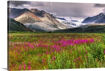 Scenic view of Gulkana Glacier from the Richardson Highway with fireweed in foreground