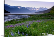 Scenic view of Lutak Inlet and the Chilkoot Range near Haines