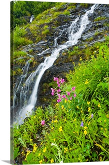 Small waterfall near the coastline of Shoup Bay in Prince William Sound, Alaska