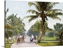 Bicycle Avenue Palm Beach Florida Vintage Photograph