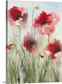 Field Poppies II