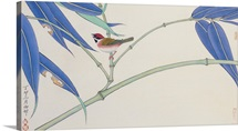 Green Bamboo and Red Bird